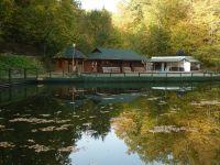 Lacul Alunis