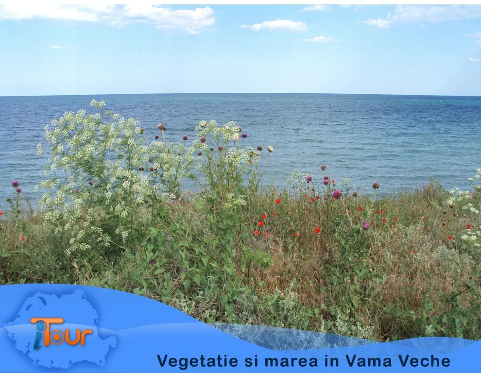 Vegetatie si marea in Vama Veche