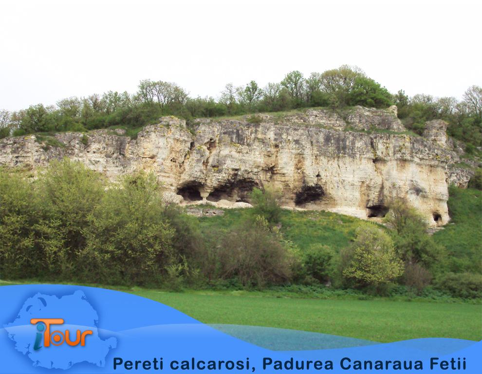 Padurea Canaraua Fetii