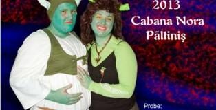 Afis carnavalul primaverii 2013