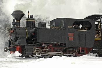 764.211 Mariuta 1910