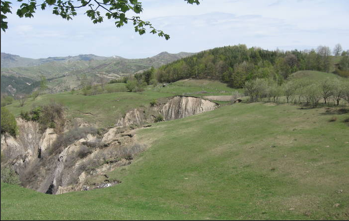Rezervatia Platoul Meledic Buzau