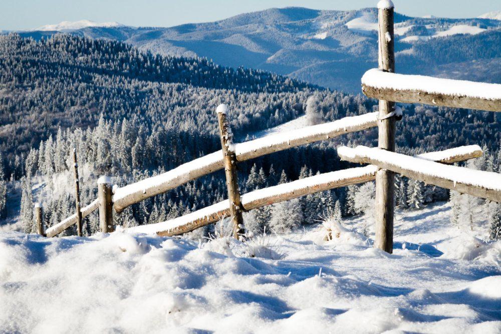 Foto Club Neamt, Vlad Luncanu, www.fotoclubneamt.ro